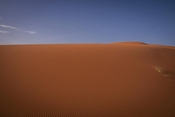 Great field of sand